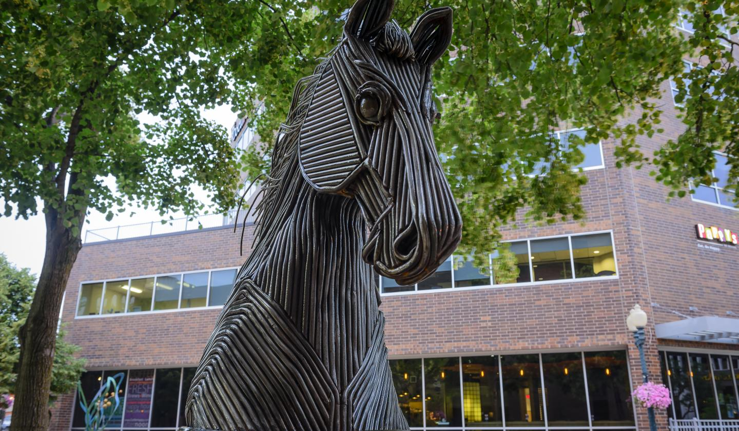 Sioux Falls SculptureWalk 2015