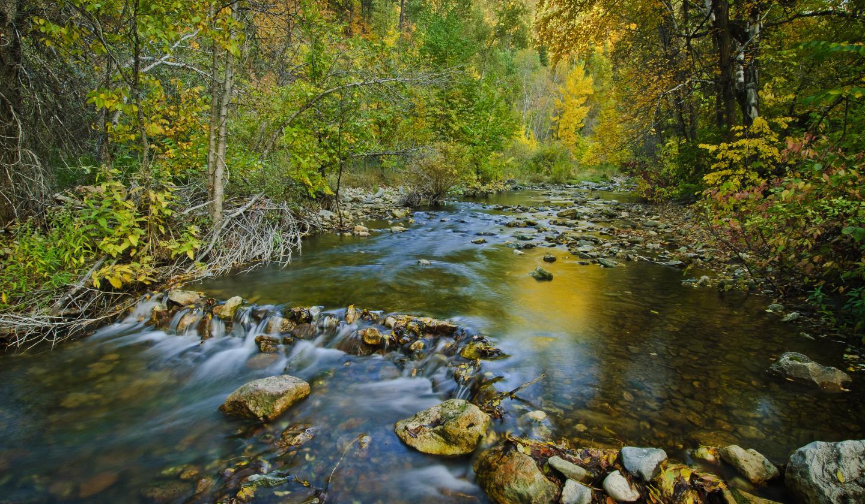 Spearfish Creek, Spearfish Canyon