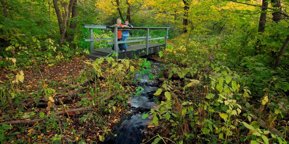 Sica Hollow State Park, near Sisseton