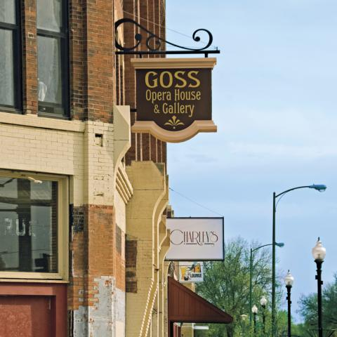 The new Goss Block includes an opera house, coffee shop, emporium and art gallery