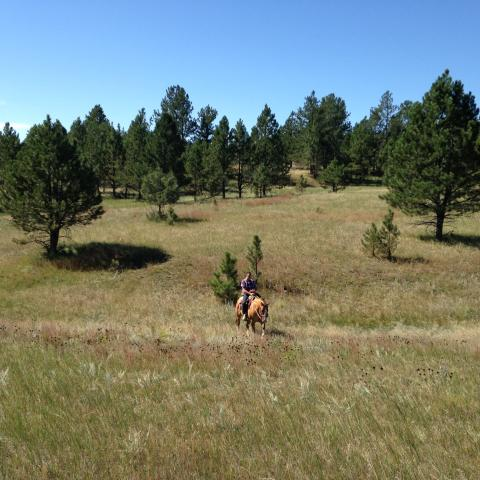 Sage meadow ranch on the trail