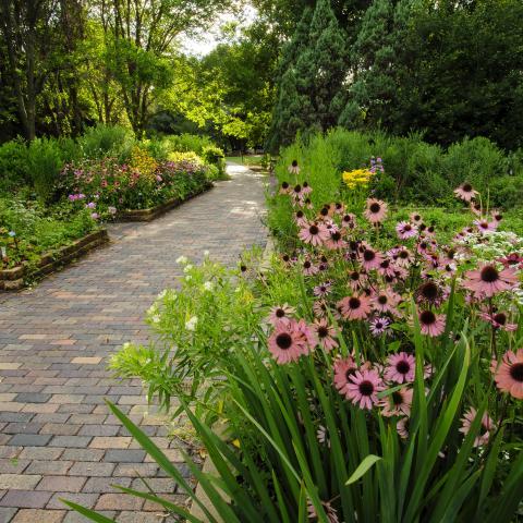 McCrory Gardens, Brookings